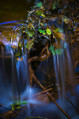 Photograph - Woodland Stream 1 by Mick House