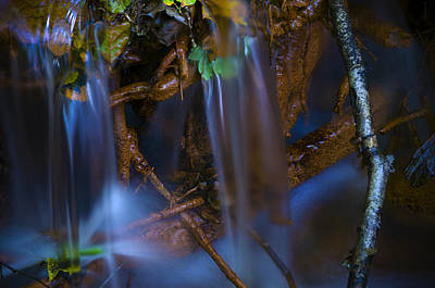 Photograph - Woodland Stream 2 by Mick House