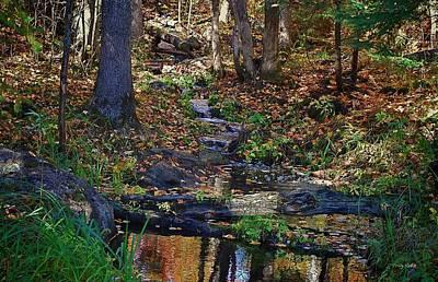 1920s Flapper Girl - Woodland Stream by Craig Voth