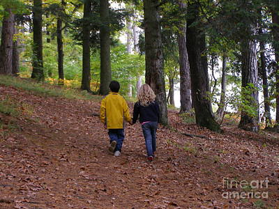 Photograph - Woodland Walk by Tamyra Crossley