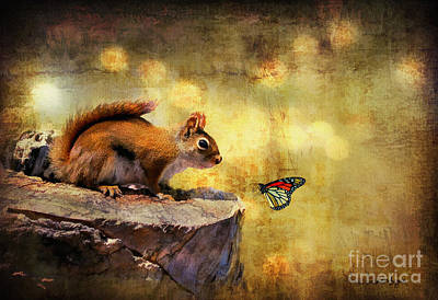 Squirrel Wall Art - Photograph - Woodland Wonder by Lois Bryan