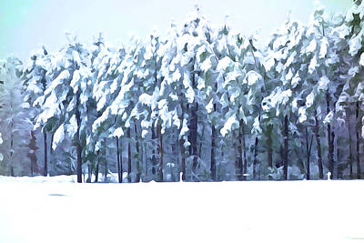Photograph - Woodlands In Winter  by Charlie and Norma Brock