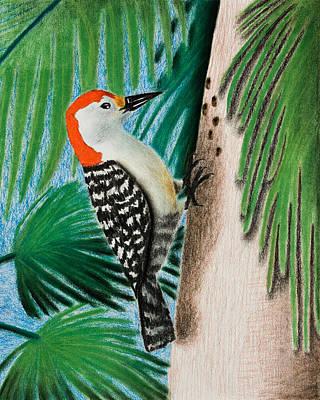 Woodpecker Mixed Media - Woodpecker by Jeanette K