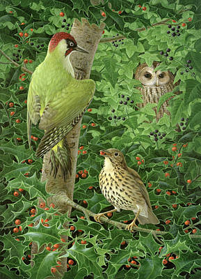 Woodpecker Painting - Woodpecker Owl And Thrush  by Birgitte Hendil