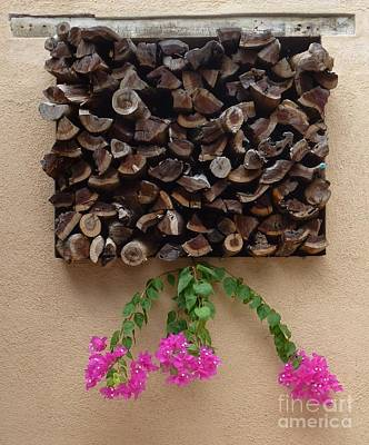 Photograph - Woodpile Plus by Barbie Corbett-Newmin