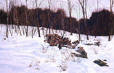 Painting - Woodpile by Tom Wooldridge