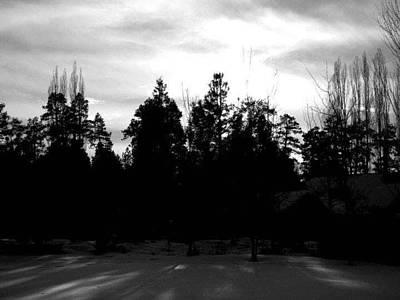 Photograph - Woods by Brandon Garcia