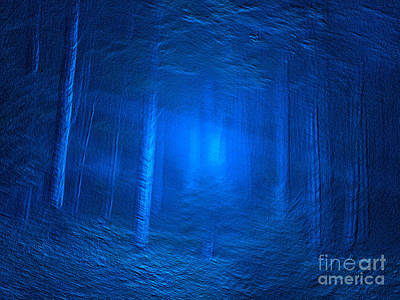 Photograph - Woods In Blues by Deborah DeLaBarre