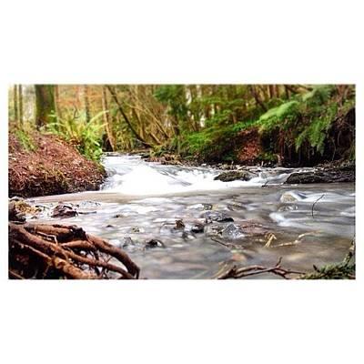 Landscape_lover Photograph - #woods #landscape #landscape_lover by Ross Mc Laughlin