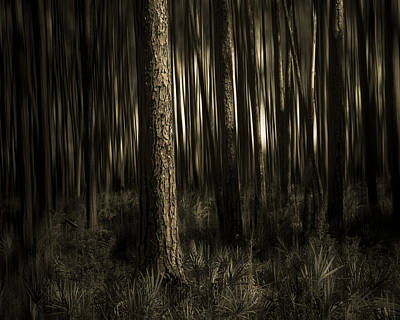 Woods Art Print by Mario Celzner