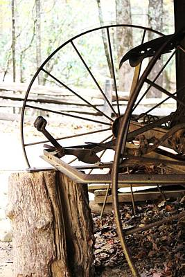 Photograph - Woody And Wheely by Faith Williams
