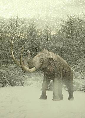 Woolly Mammoth In Snow Art Print by Victor Habbick Visions