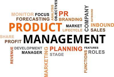 Word Cloud - Product Management Original by Amir Zukanovic