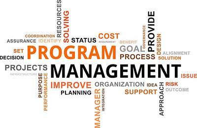 Word Cloud - Program Management Original