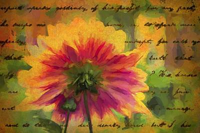 Photograph - Words From Underneath by Alice Gipson