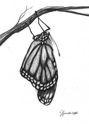 Words Of A Butterfly Art Print