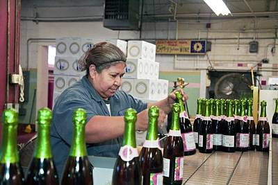 Of Wine Bottles Photograph - Worker Packing Bottles At A Winery by Jim West