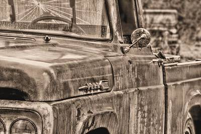 Photograph - Workhorses Bw by JC Findley