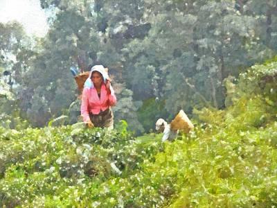 Digital Art - Working At A Tea Plantation by Digital Photographic Arts