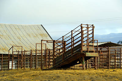 Cattle Chute Photograph - Working Cattle Ranch by Barbara Snyder