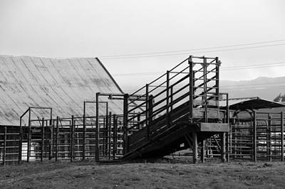 Cattle Chute Photograph - Working Cattle Ranch Black White by Barbara Snyder