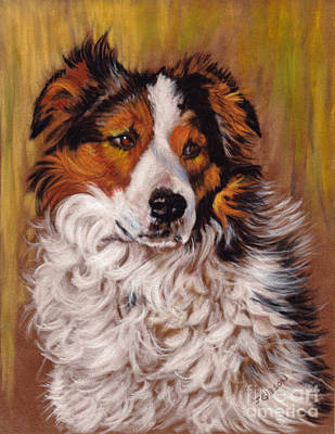 Working Collie Original