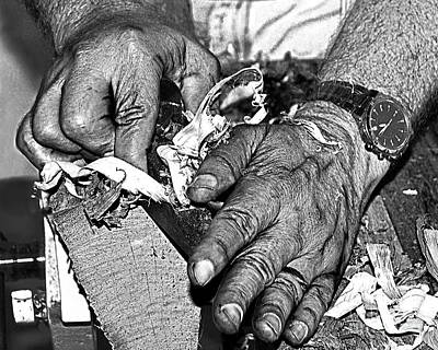 Artist Working Photograph - Working Hands by Diane E Berry