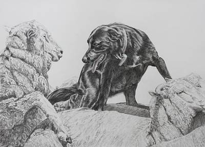 Kelpie Drawing - Working Mother II by Leonie Bell