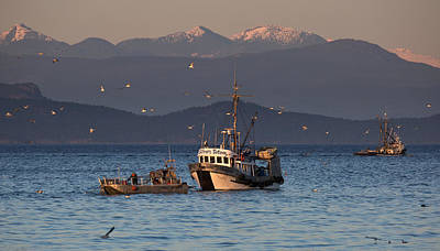 Photograph - Working The Nets by Randy Hall