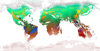 Digital Art - World Map Whorls4 by Paulette B Wright