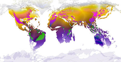 Digital Art - World Map Whorls5 by Paulette B Wright