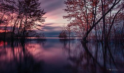 Haida Photograph - World Out Of A Dream by Dustin Abbott