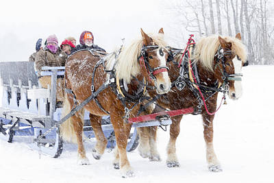 World's Greatest Sleigh Rides Original by Jim Walker