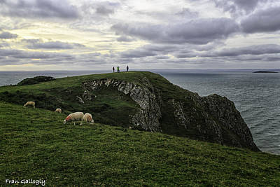 Photograph - Worms Head View by Fran Gallogly