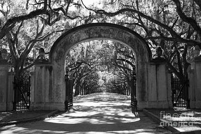 Photograph - Wormsloe Plantation Gate - Black And White 2x3 by Carol Groenen