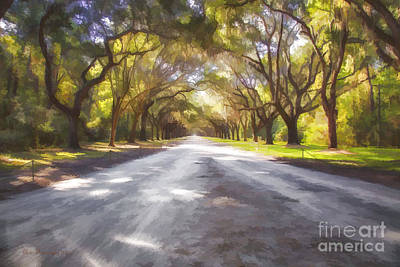 Photograph - Wormsloe Plantation by Linda Blair