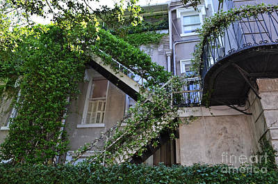 Charleston Photograph - Wought Iron Ivy Staircase by Amy Lucid