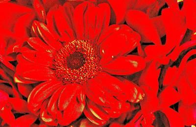 Wow Red Art Print
