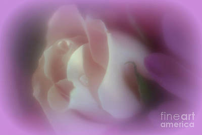 Photograph - Wrapped In Warmth by Mary Lou Chmura