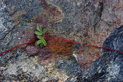 Wrapped Rock Art Print