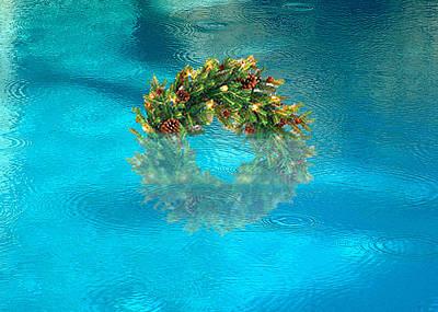 Digital Art - Wreath In The Pool by Stan  Magnan