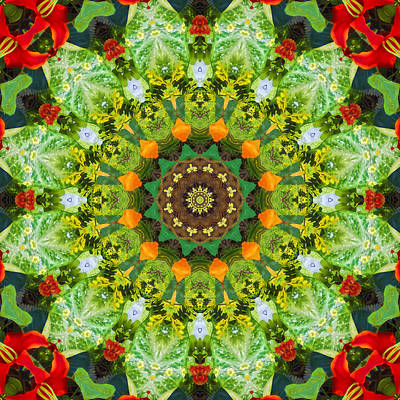 Photograph - Wreath Kaleidoscope by Bill Barber
