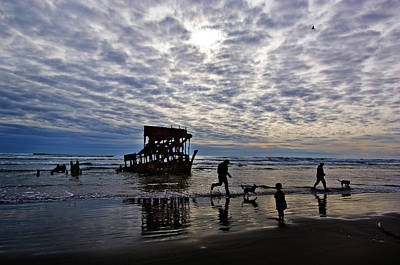 Abandoned Pets Photograph - Wreck Of The Peter Iredale, Warrenton by Panoramic Images