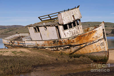 Photograph - Wreck Of The Point Reyes Boat In Inverness Point Reyes California Dsc2071 by Wingsdomain Art and Photography