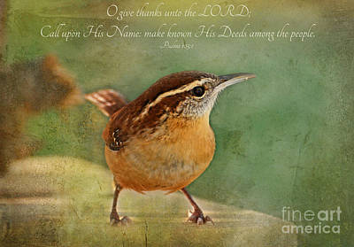 Wren With Verse Art Print