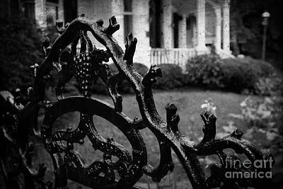 By Colleen Kammerer Photograph - Wrought Iron Gate by Colleen Kammerer