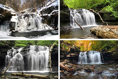 Photograph - Wyandot Falls In Every Season by Gene Walls