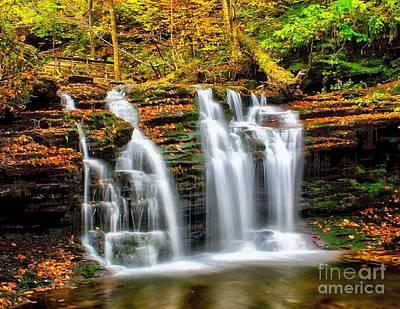 Photograph - Wyandot Falls Ricketts Glen by Nick Zelinsky