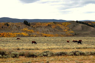 Mark Wagner Wall Art - Photograph - Wyoming Landscape by Mark Wagner