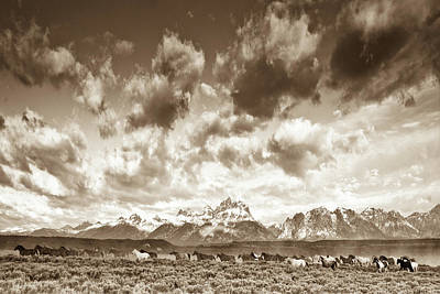 Wildlife Landscape Photograph - Wyoming Skies by Gary Crandall